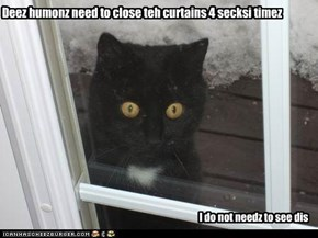 Deez humonz need to close teh curtains 4 secksi timez