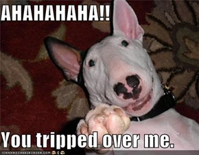 AHAHAHAHA!!  You tripped over me.