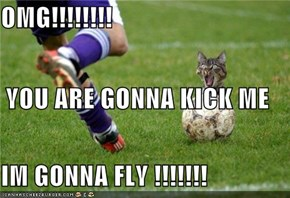OMG!!!!!!!! YOU ARE GONNA KICK ME IM GONNA FLY !!!!!!!