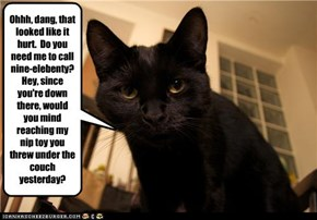 Sympathy Cat is Sympathetic