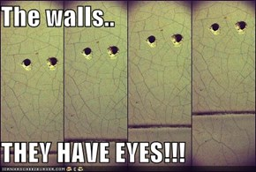 The walls..  THEY HAVE EYES!!!
