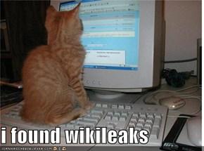 i found wikileaks