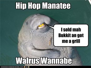 Hip Hop Manatee