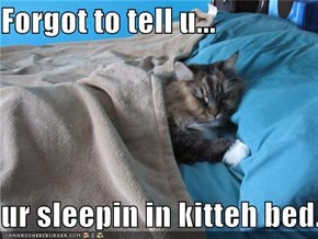 Forgot to tell u...  ur sleepin in kitteh bed.