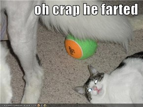 oh crap he farted