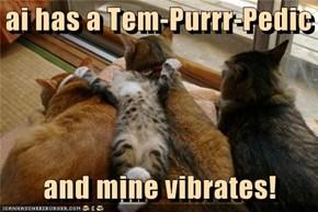 ai has a Tem-Purrr-Pedic     and mine vibrates!