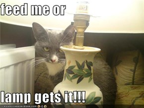 feed me or  lamp gets it!!!