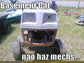 Basement Cat  nao haz mechs...