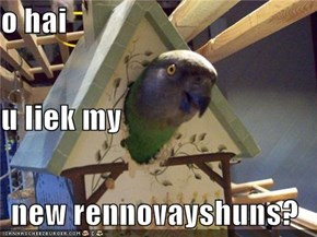 o hai u liek my new rennovayshuns?