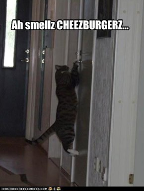 Ah smellz CHEEZBURGERZ...