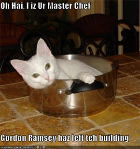 Oh Hai, I iz Ur Master Chef  Gordon Ramsey haz left teh building