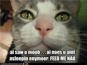 ai saw u moob . . . ai noes u aint asleepin enymoer: FEED ME NAO