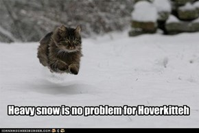 Heavy snow is no problem for Hoverkitteh