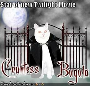 Star of new Twilight Movie