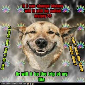 Timetravlrs on Weed