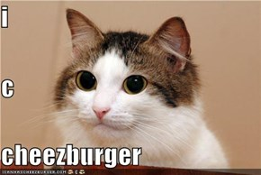 i c cheezburger