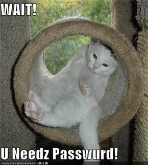 WAIT!  U Needz Passwurd!