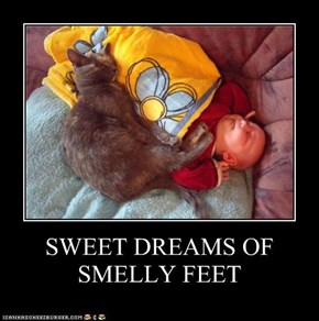 SWEET DREAMS OF SMELLY FEET