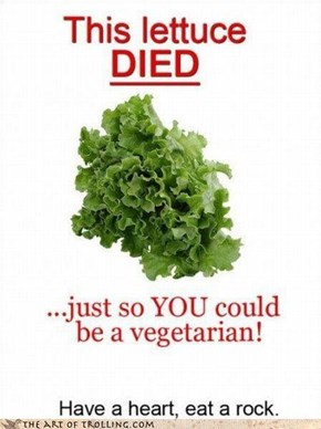u mad vegans?