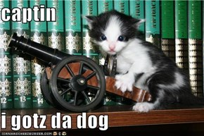 captin  i gotz da dog