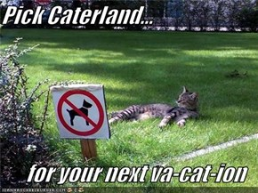 Pick Caterland...  for your next va-cat-ion