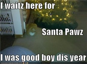 I waitz here for Santa Pawz I was good boy dis year