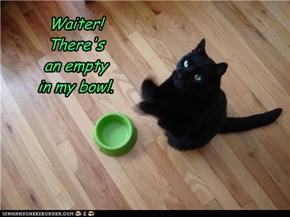 Waiter!  There's  an empty  in my bowl.