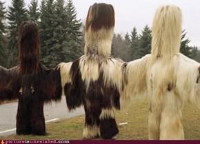 Wookies Haircuts?
