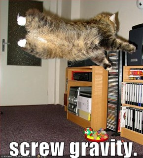screw gravity.