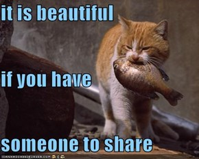 it is beautiful if you have  someone to share