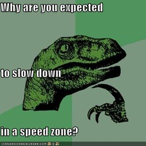 Why are you expected  to slow down in a speed zone?
