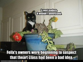 Felix's owners were beginning to suspect that theart class had been a bad idea.
