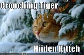 Crouching Tiger  Hiiden Kitteh