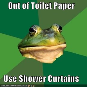 Out of Toilet Paper  Use Shower Curtains