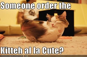 Someone order the  Kitteh al la Cute?