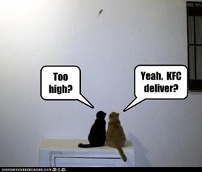 Too high?