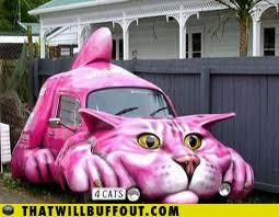 Crazy Cat Ladies Are Hitting The Streets!