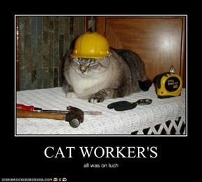 CAT WORKER'S