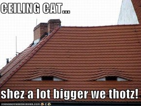 CEILING CAT...   shez a lot bigger we thotz!