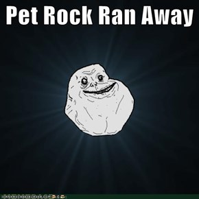 Pet Rock Ran Away