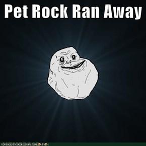 Pet Rock Ran Away