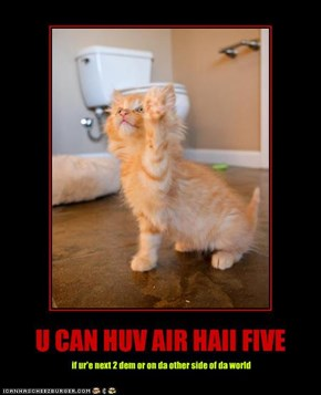 U CAN HUV AIR HAII FIVE