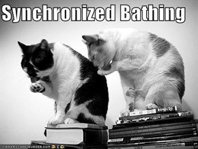 Synchronized Bathing