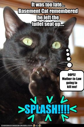 It was too late... Basement Cat remembered  he left the  toilet seat up....