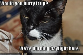 Would you hurry it up?  We're burning daylight here.