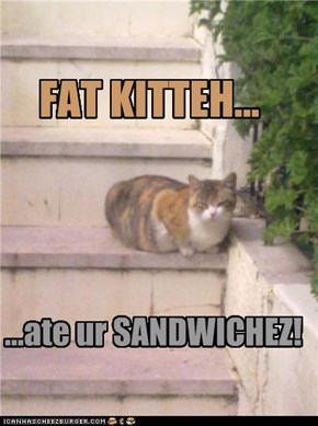 Fat Kitteh