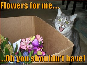 Flowers for me....  ...Oh you shouldn't have!