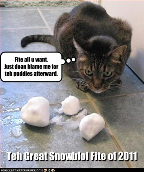 Teh Great Snowblol Fite of 2011