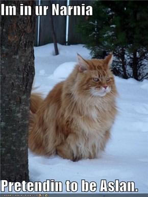 Im in ur Narnia  Pretendin to be Aslan.