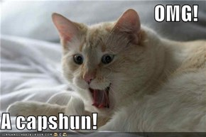 OMG!  A capshun!